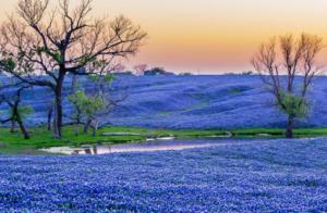 RV parks Texas